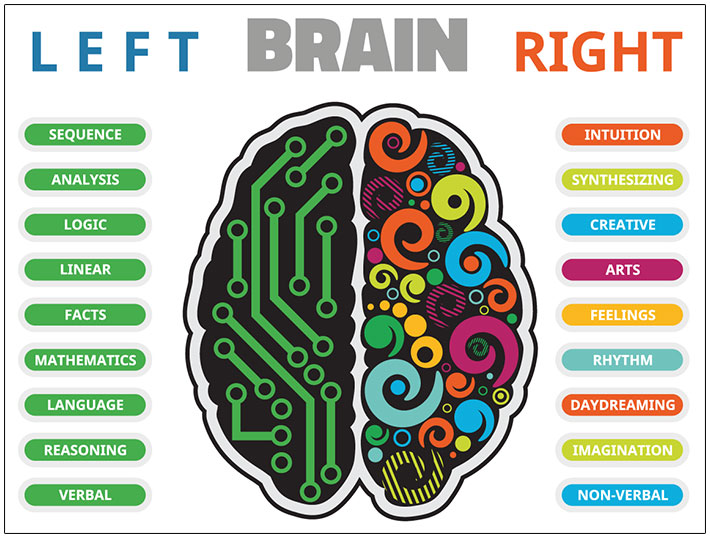 left-brain-right